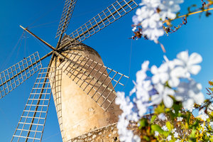 Historical windmill in the old town of Palma de Mallorca
